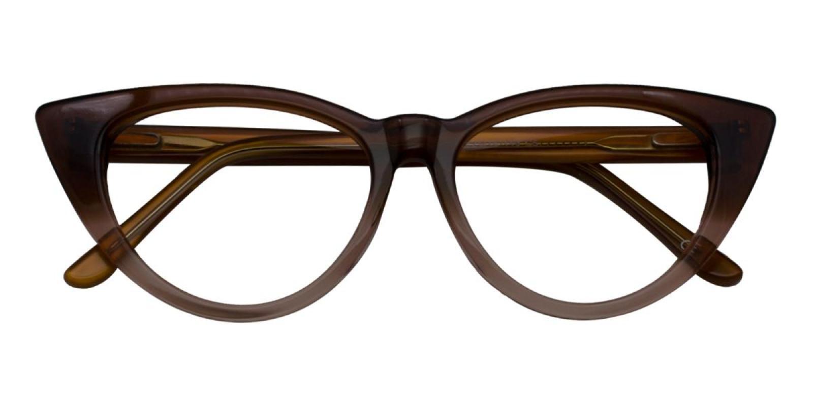 Charm-Brown-Cat-Acetate-Eyeglasses-detail