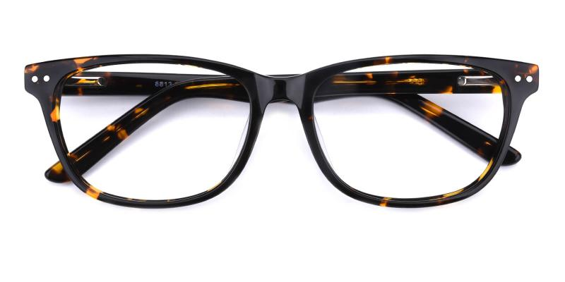 Prologue-Tortoise-Eyeglasses / SpringHinges / UniversalBridgeFit