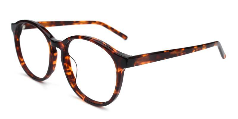Havana-Tortoise-Eyeglasses