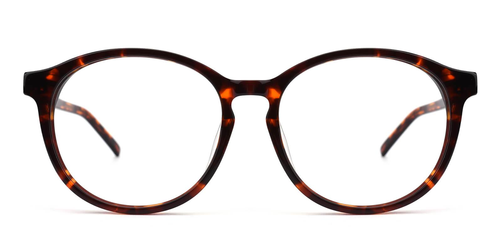 Havana-Tortoise-Round-Acetate-Eyeglasses-additional2