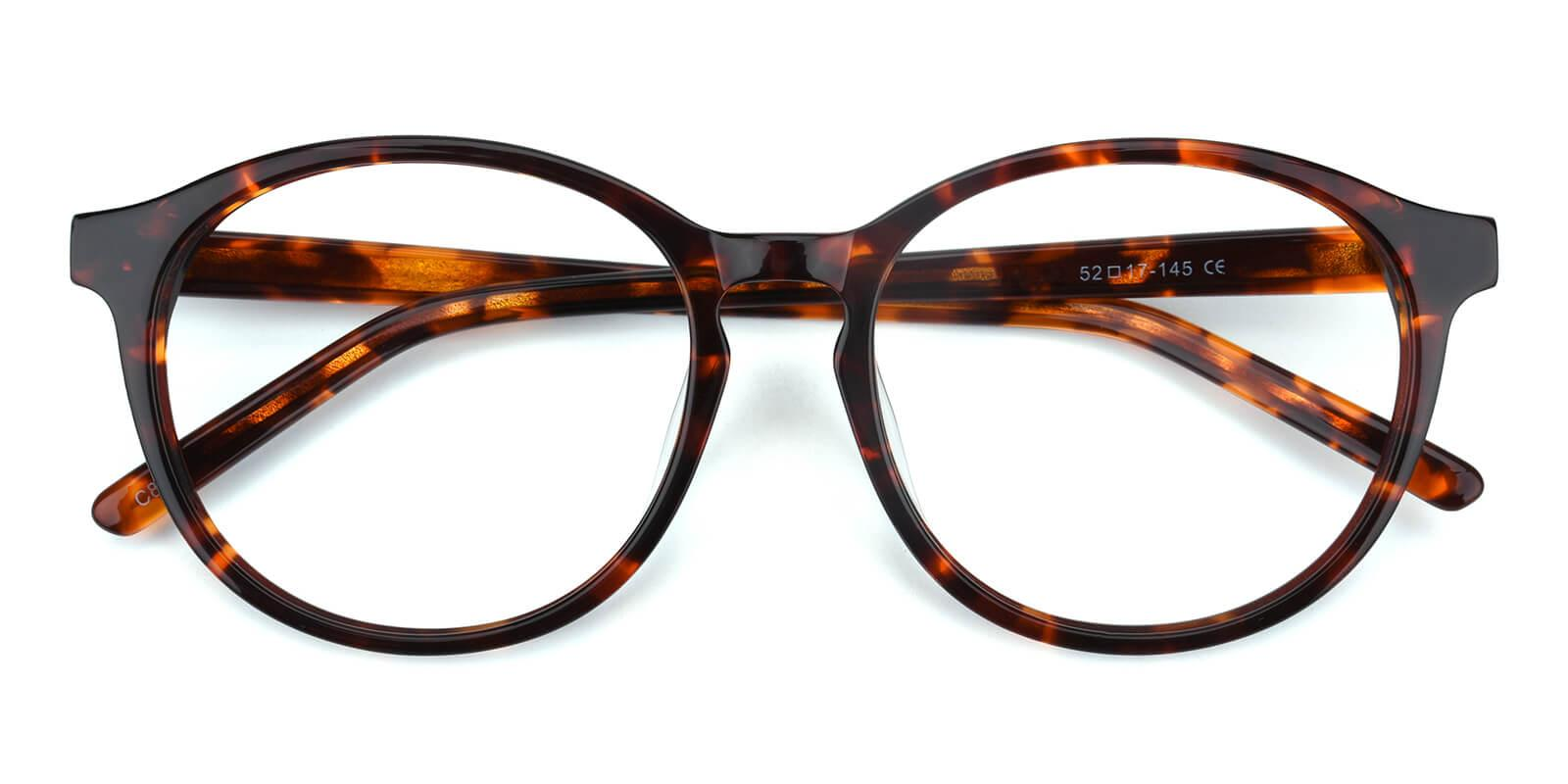 Havana-Tortoise-Round-Acetate-Eyeglasses-detail