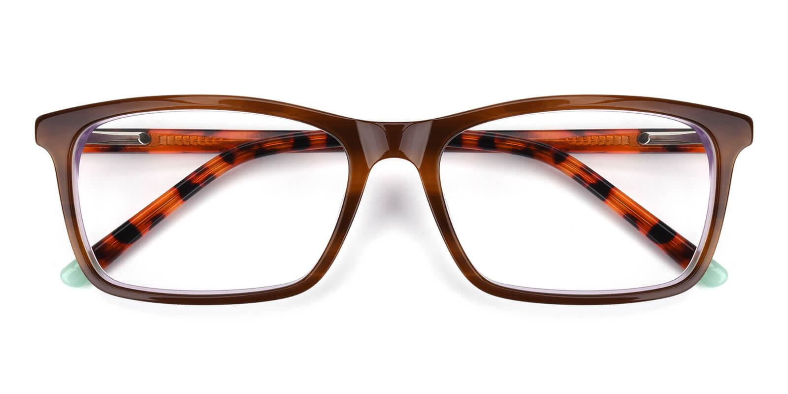 Crane-Tortoise-Rectangle-Acetate-Eyeglasses-detail