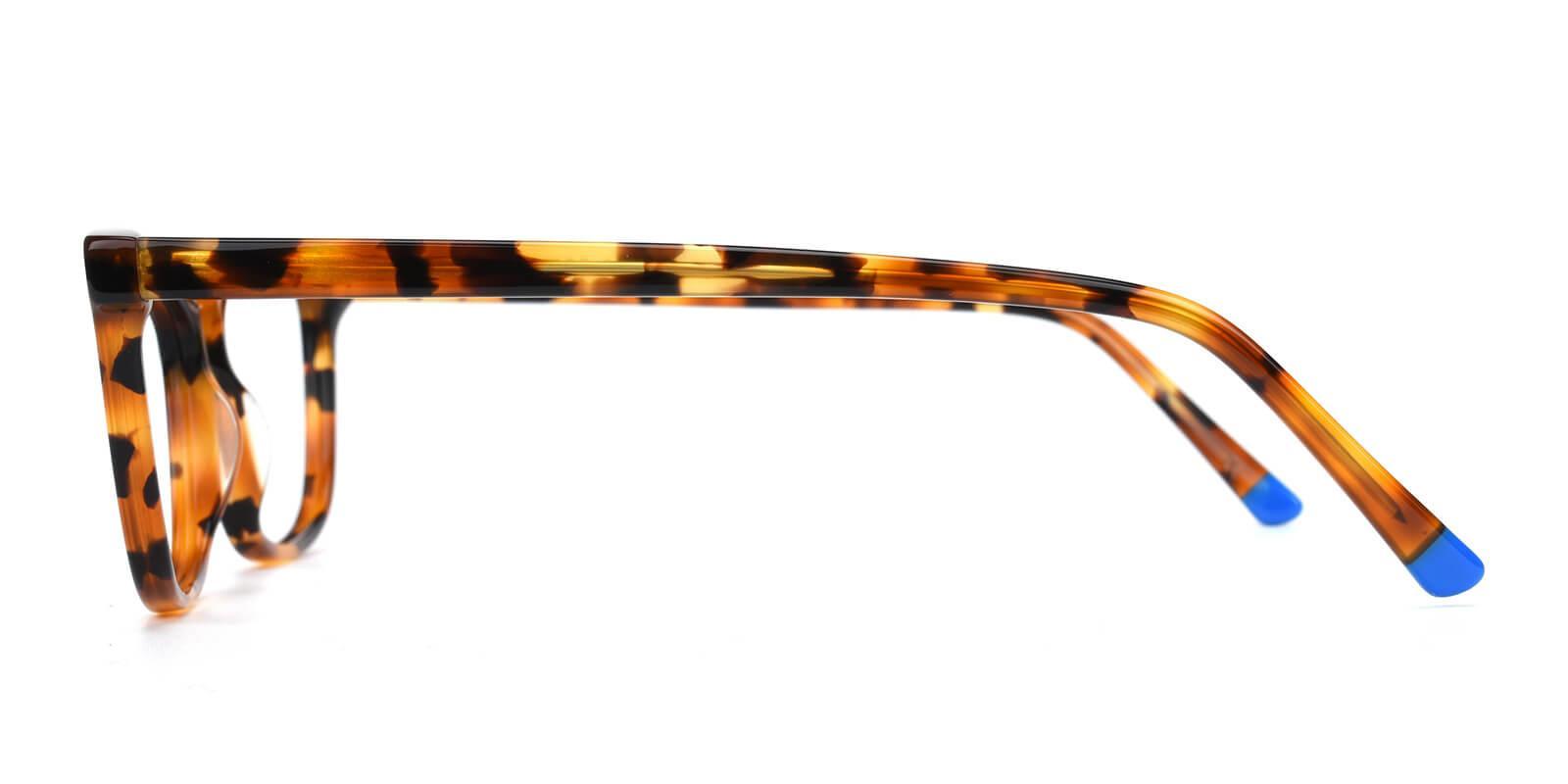 Ezra-Leopard-Cat-Acetate-Eyeglasses-detail