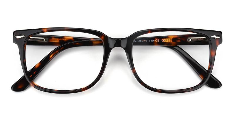 Tempiry-Pattern-Eyeglasses / SpringHinges / UniversalBridgeFit