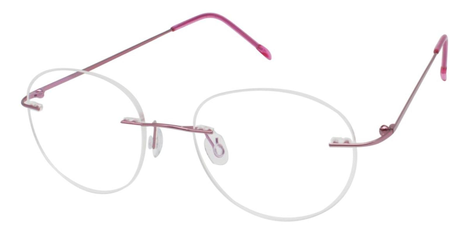 Ditto-Pink-Varieties-Metal-Eyeglasses-additional1