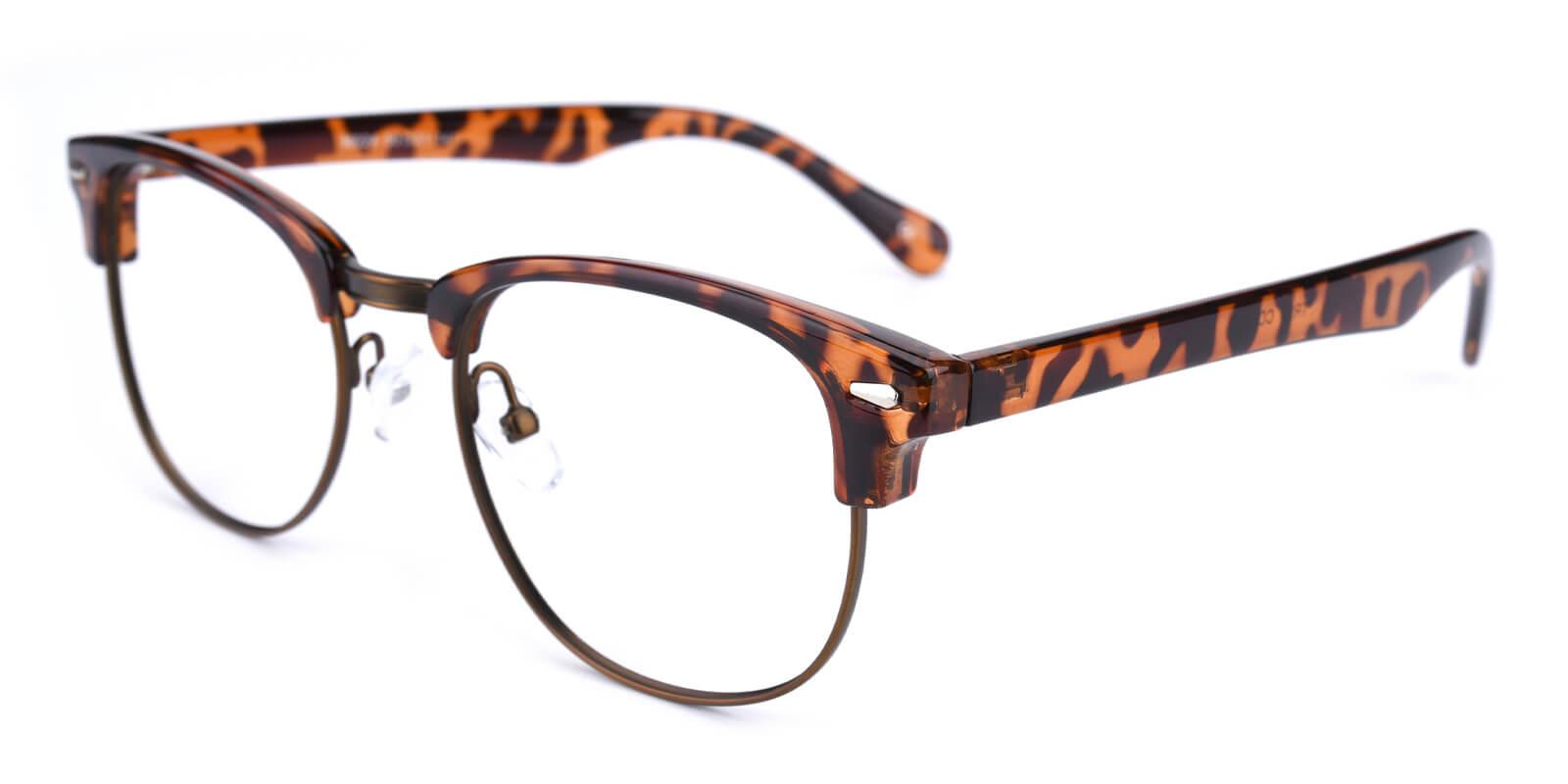 Ferrous-Leopard-Browline-Metal / Combination / Plastic-Eyeglasses-additional1