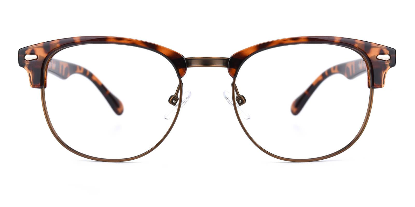 Ferrous-Leopard-Browline-Metal / Combination / Plastic-Eyeglasses-additional2
