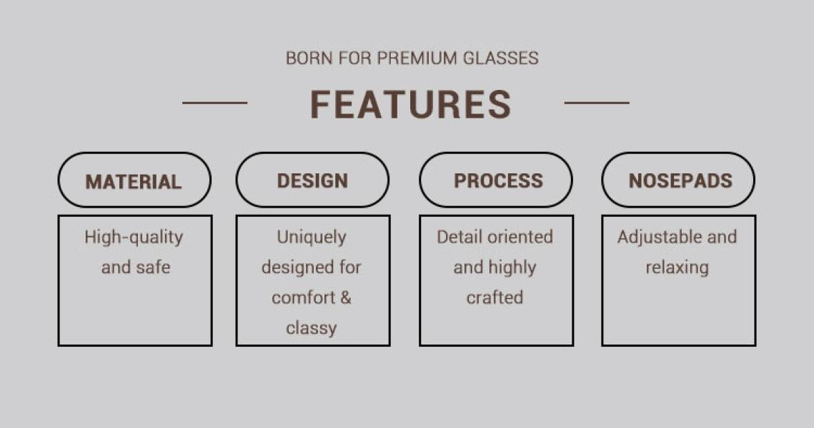 Avenue-Leopard-Metal / Combination / TR-Eyeglasses-detail1