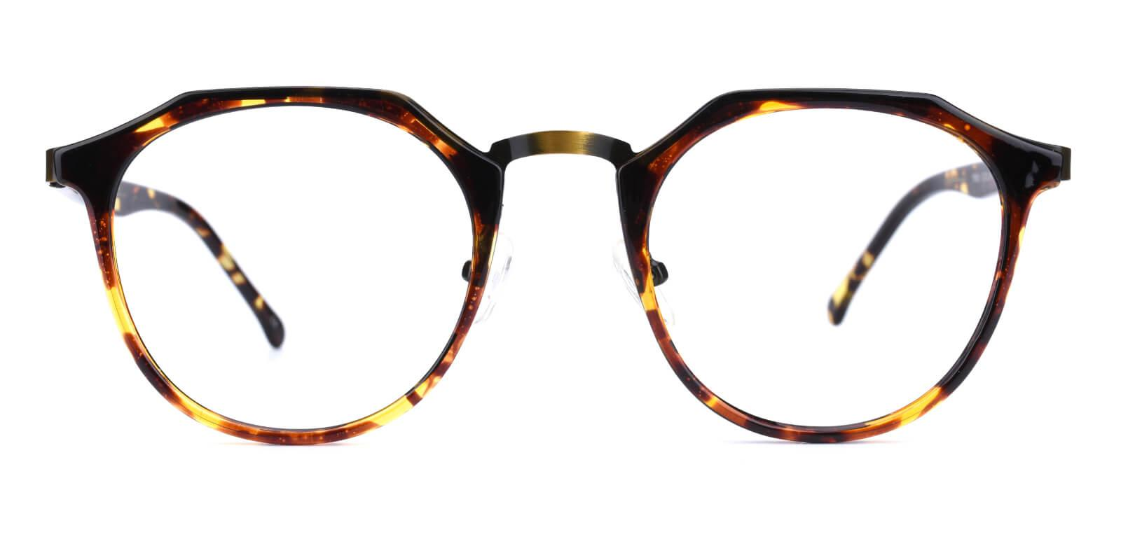 Intense-Leopard-Geometric-Combination / Metal / TR-Eyeglasses-additional2