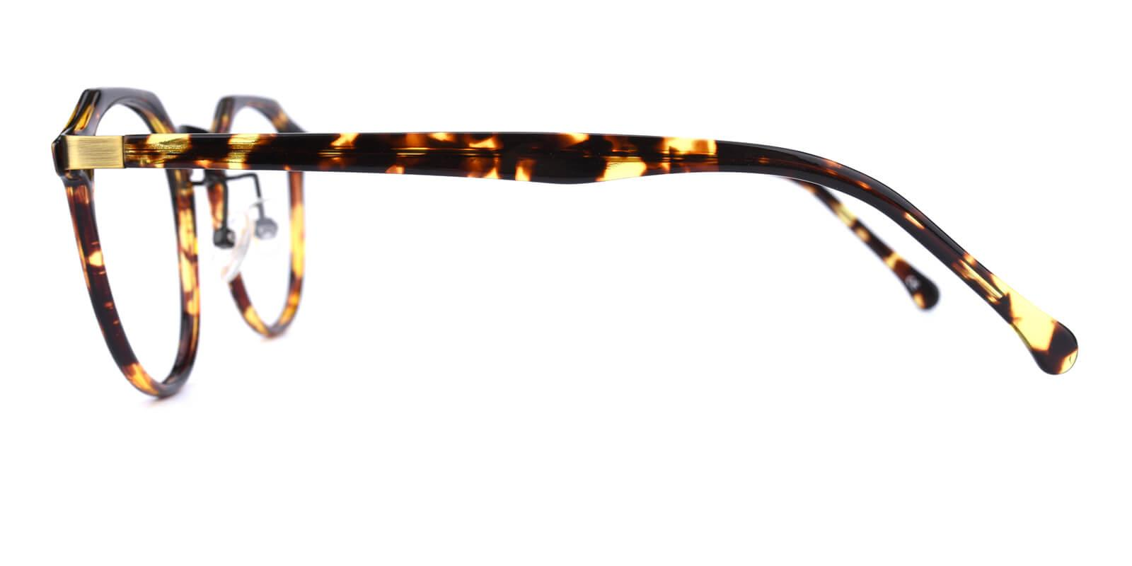 Intense-Leopard-Geometric-Combination / Metal / TR-Eyeglasses-additional3