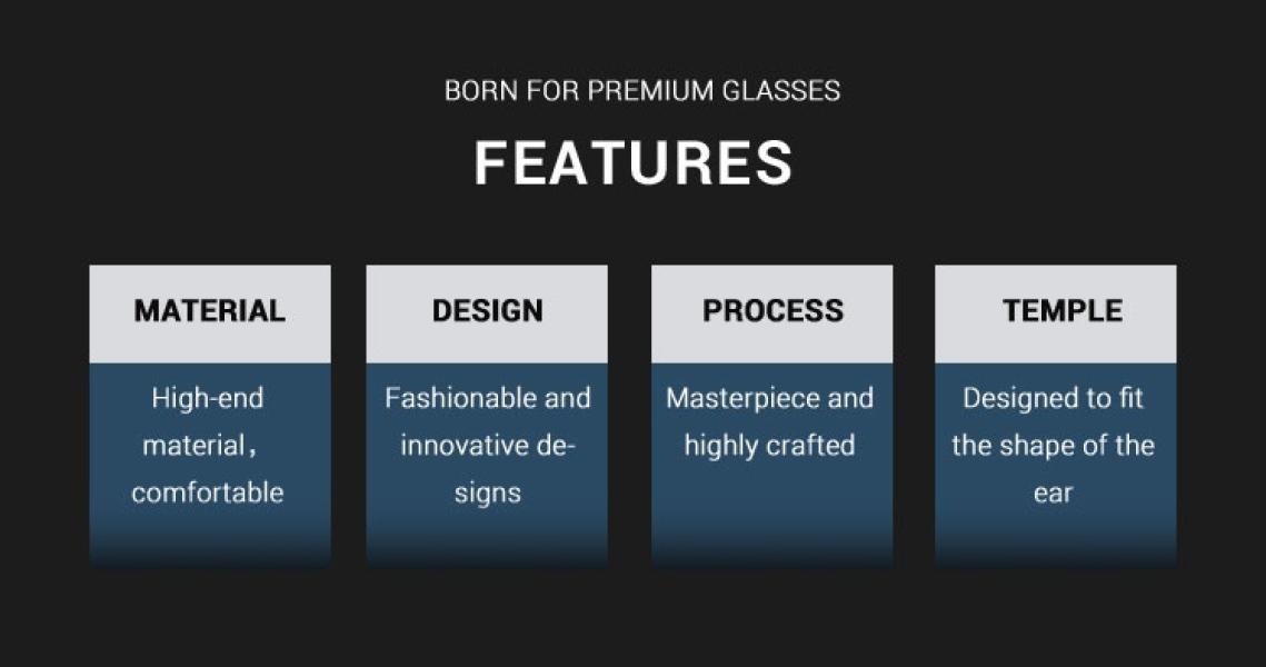 Bezel-Brown-Metal-Eyeglasses-detail1