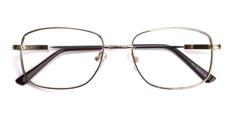 Twist-Gold-Eyeglasses / NosePads
