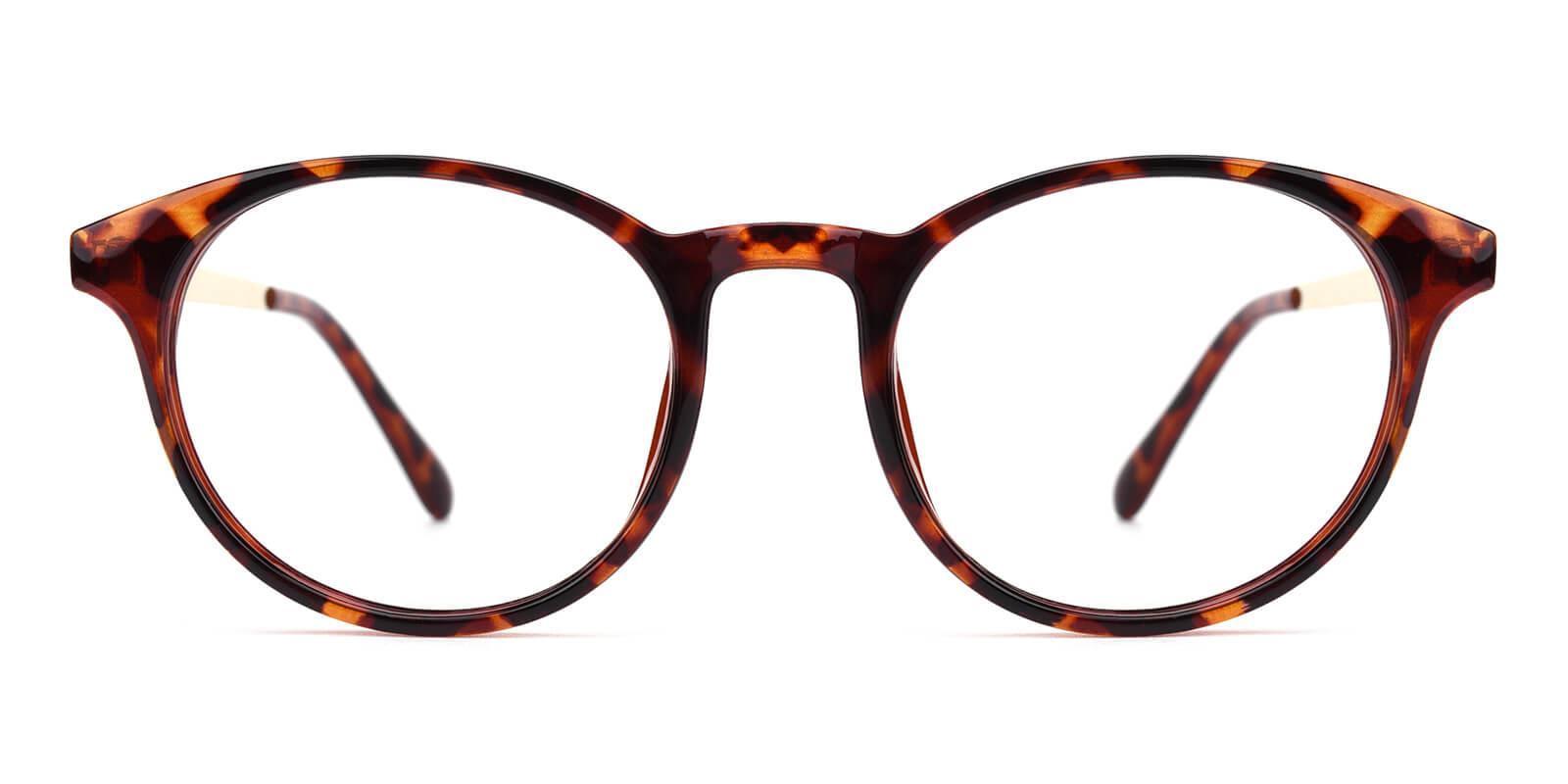 Zaire-Tortoise-Round-Metal / TR-Eyeglasses-additional2