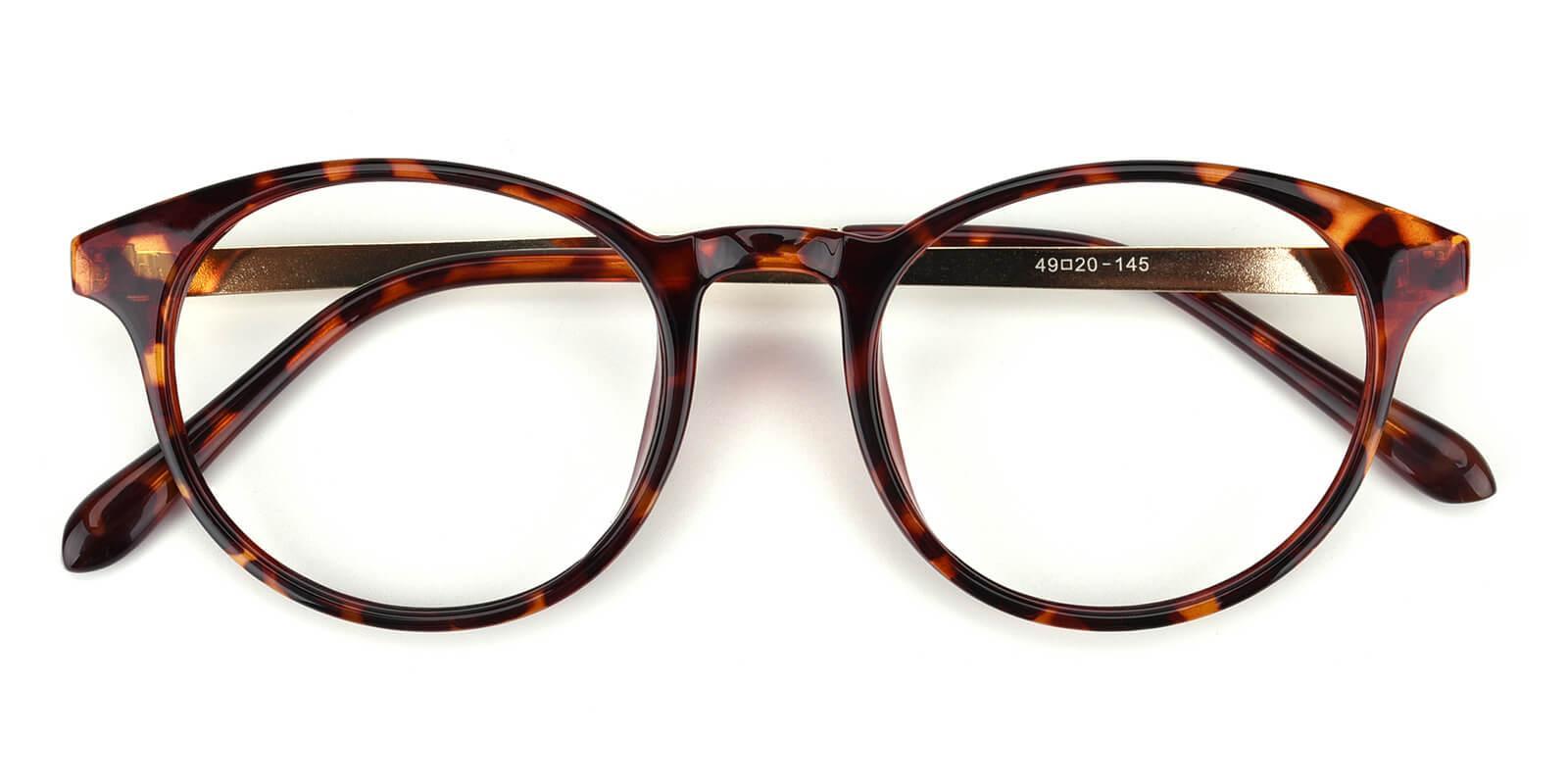 Zaire-Tortoise-Round-Metal / TR-Eyeglasses-detail