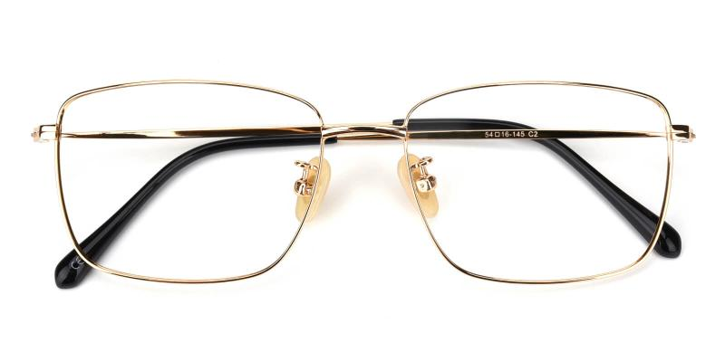 Pensieve-Gold-Eyeglasses / Lightweight / NosePads