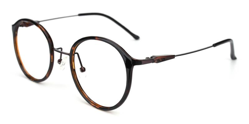 Portrait-Brown-Eyeglasses