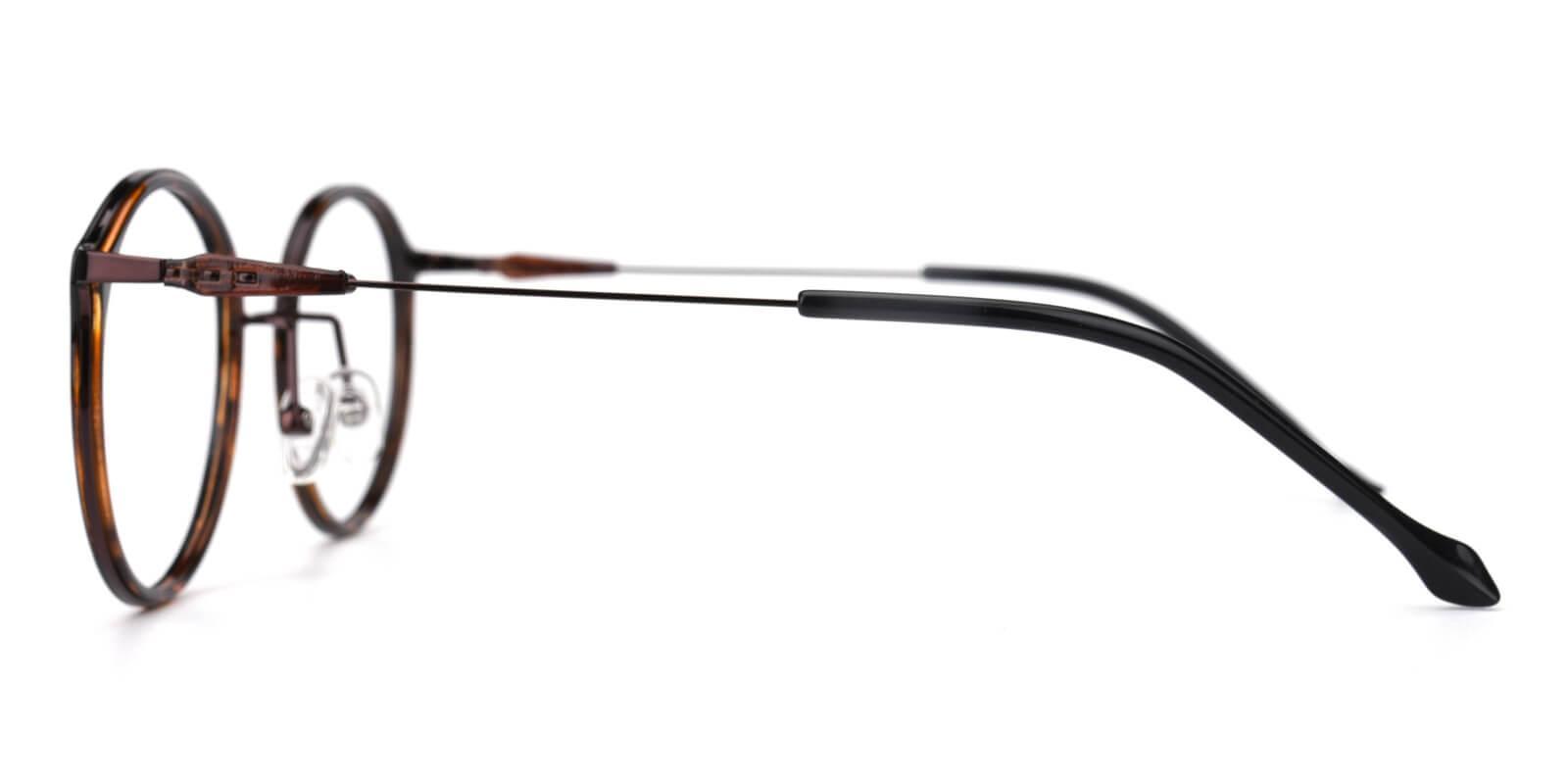 Portrait-Brown-Round-Metal / TR-Eyeglasses-detail