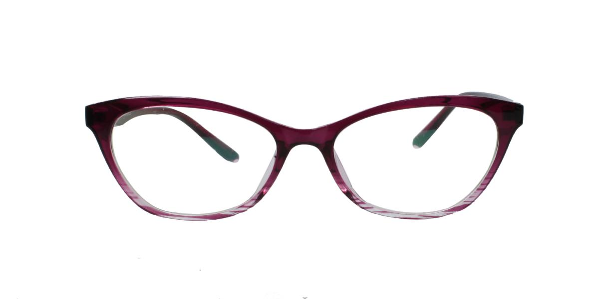 Ellipse-Purple-TR-Eyeglasses-detail