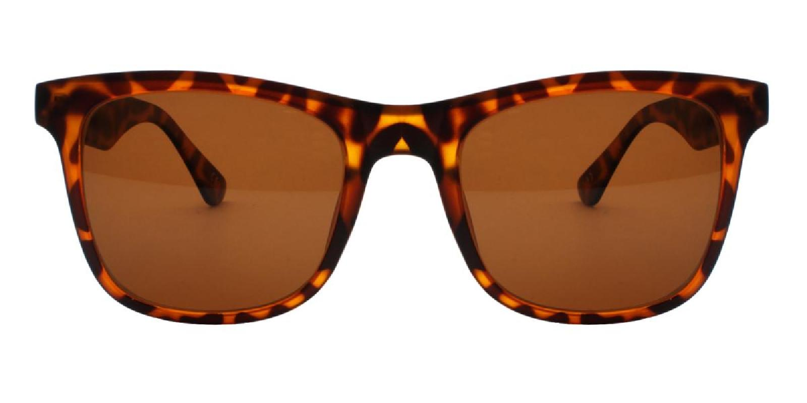 Hanowe-Brown-Square / Cat-TR-Sunglasses-additional2