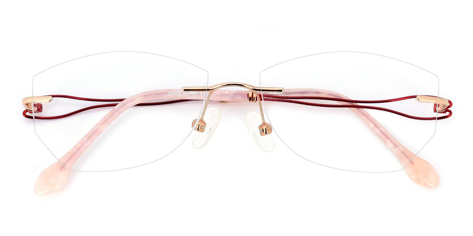 Ivanka-Red-Varieties-Titanium-Eyeglasses-detail
