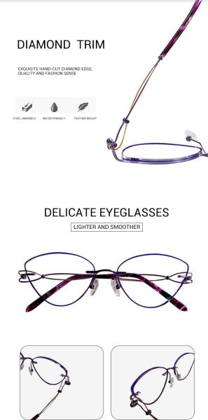 Dome-Purple-Titanium-Eyeglasses-detail1