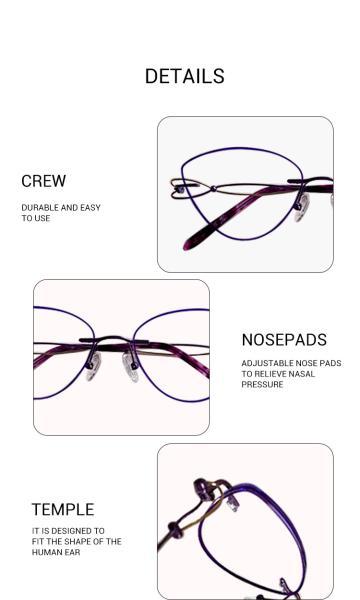 Dome-Purple-Titanium-Eyeglasses-detail2