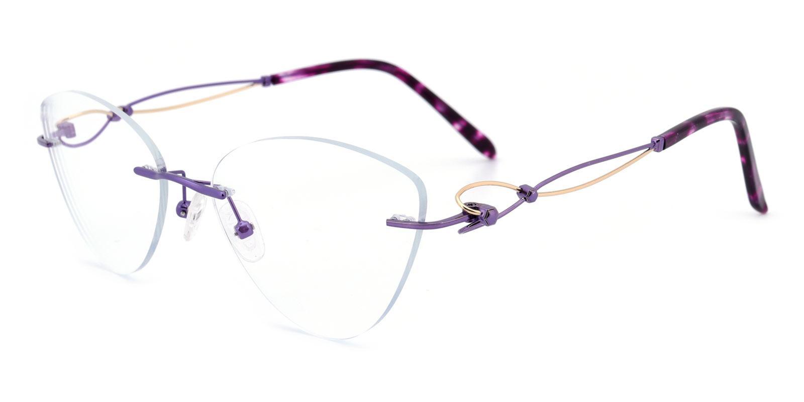 Dome-Purple-Cat / Varieties-Titanium-Eyeglasses-additional1