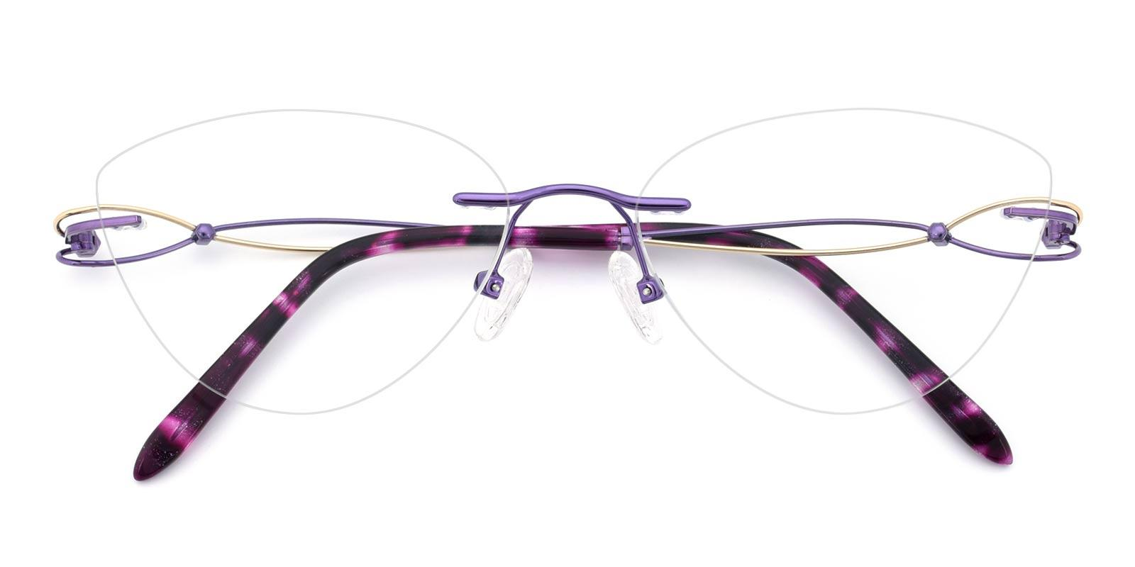 Dome-Purple-Cat / Varieties-Titanium-Eyeglasses-detail