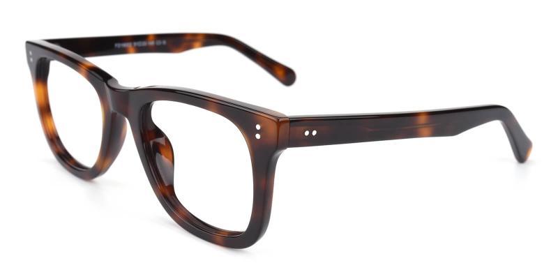 Trend-Tortoise-Eyeglasses