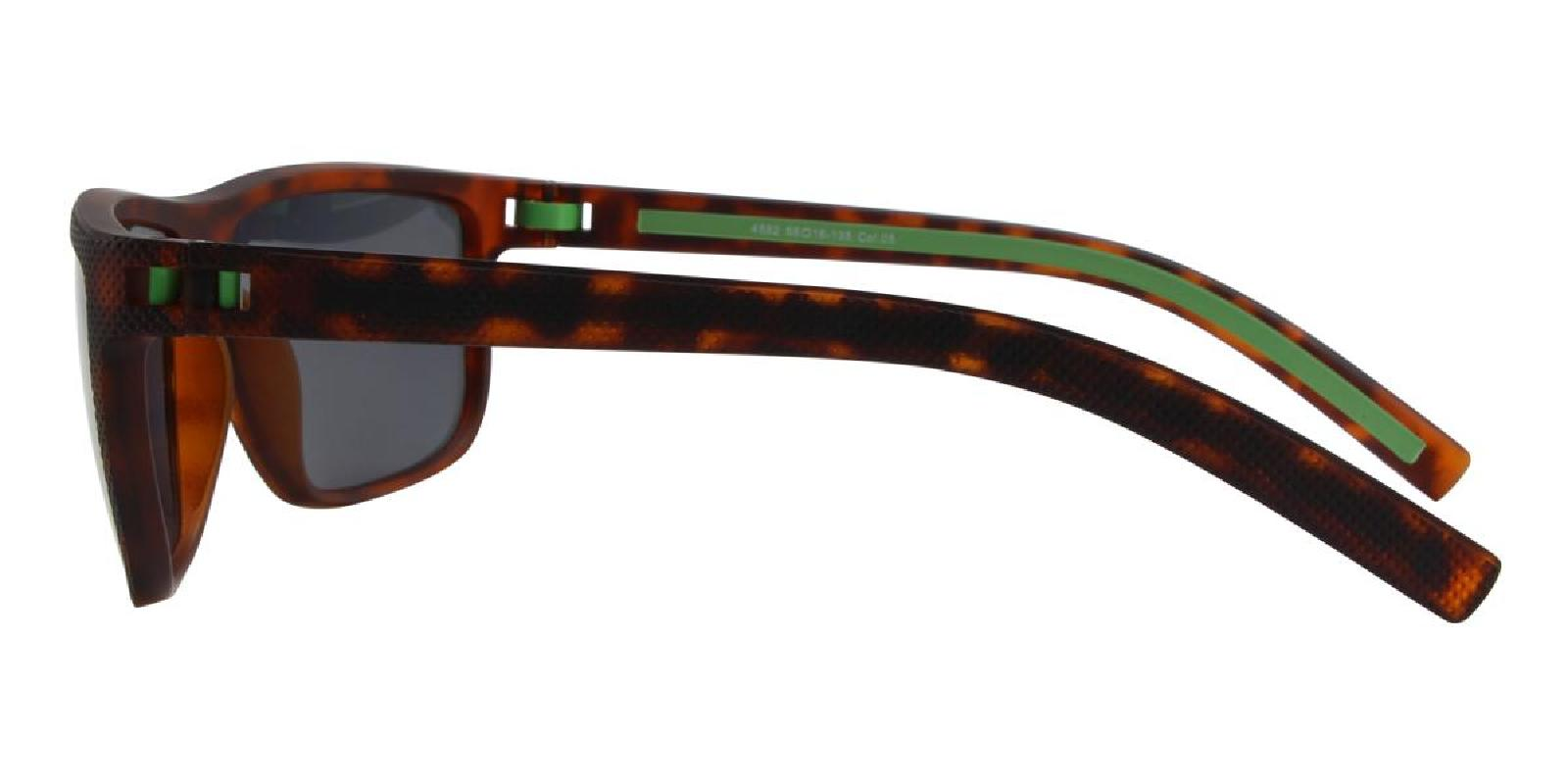 Desert-Tortoise-Rectangle-TR-Sunglasses-detail