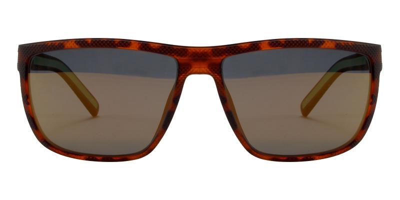 Desert-Tortoise-Sunglasses