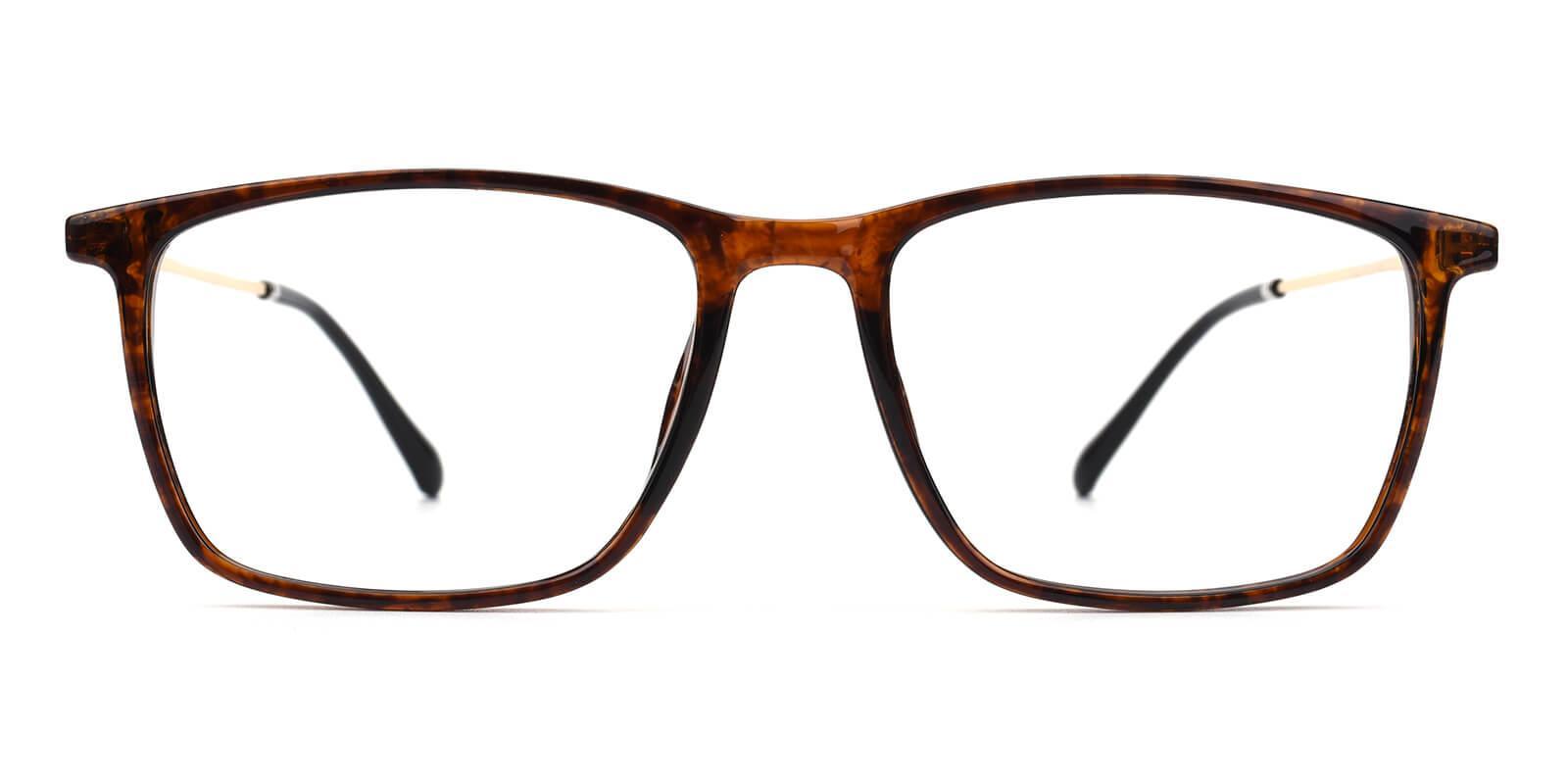 Erisony-Tortoise-Rectangle-TR-Eyeglasses-detail