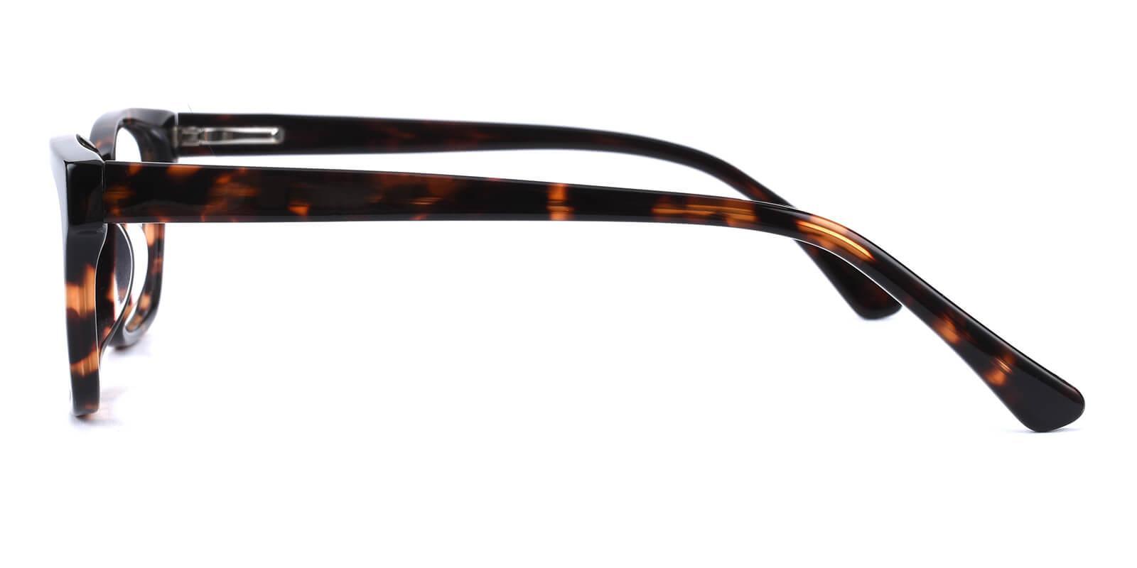 Mizura-Tortoise-Cat-Acetate-Eyeglasses-additional3