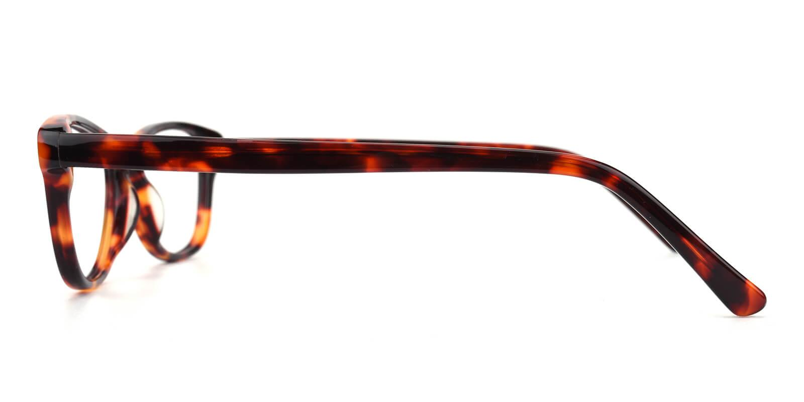 Marind-Tortoise-Cat-Acetate-Eyeglasses-additional3