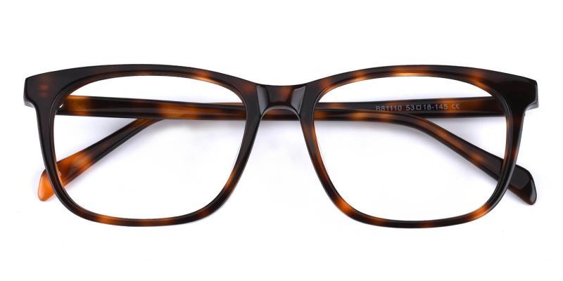 Bugger-Tortoise-Eyeglasses