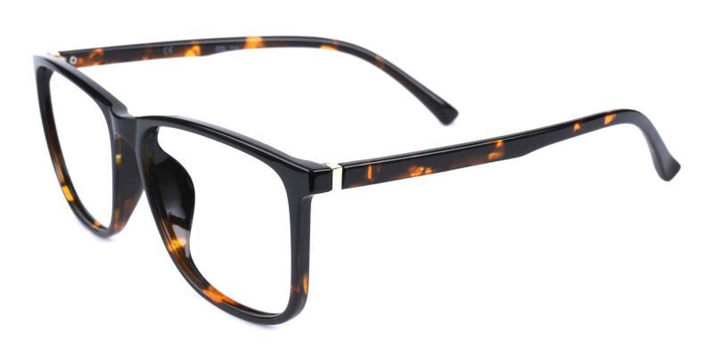 Poise-Tortoise-Eyeglasses