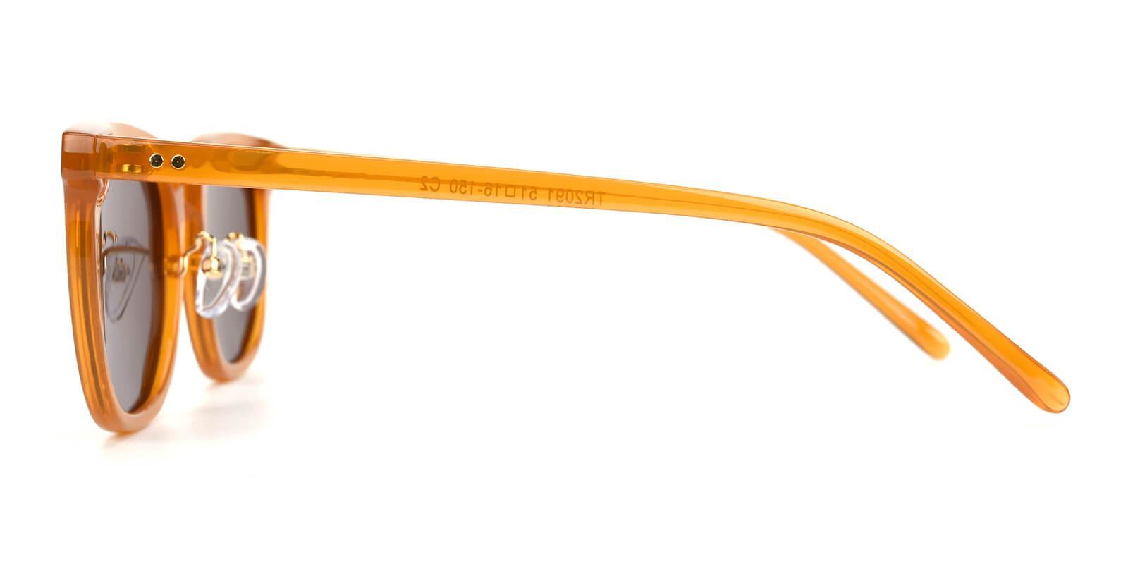 Laya-Brown-Square-TR-Sunglasses-additional3