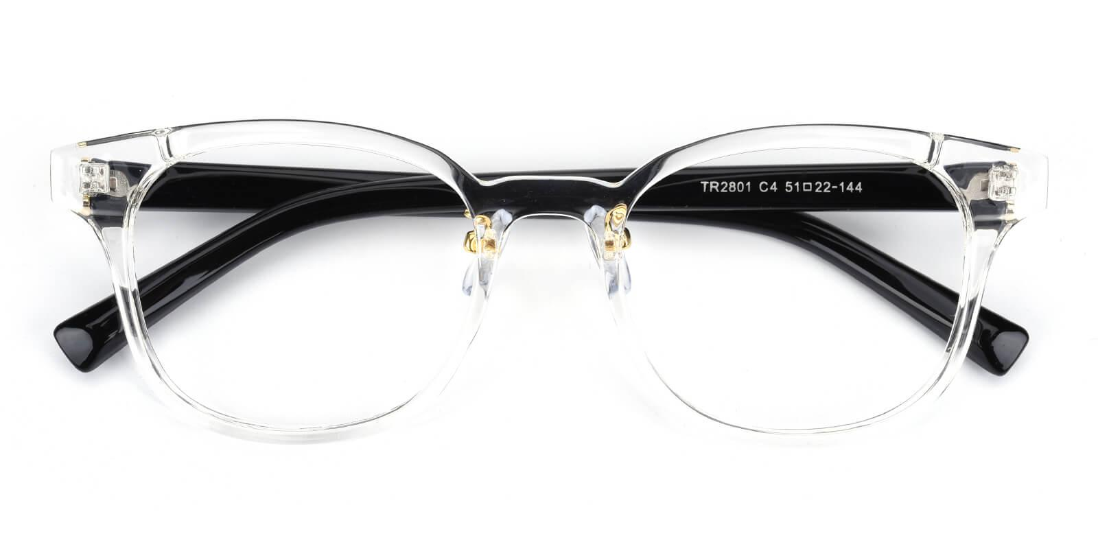 Durns-Translucent-Square-TR-Eyeglasses-detail