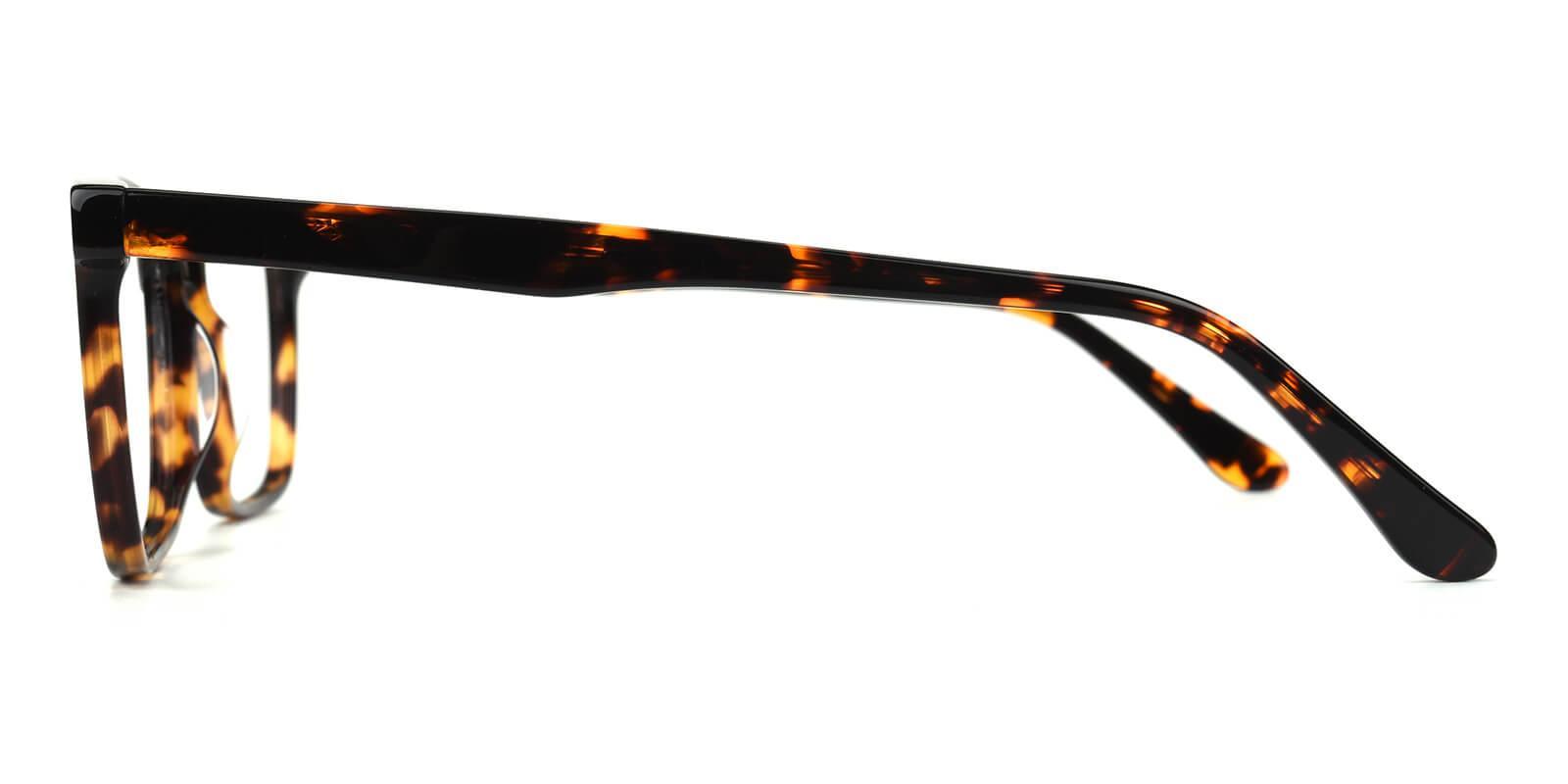 Sakou-Tortoise-Square-Acetate-Eyeglasses-additional3