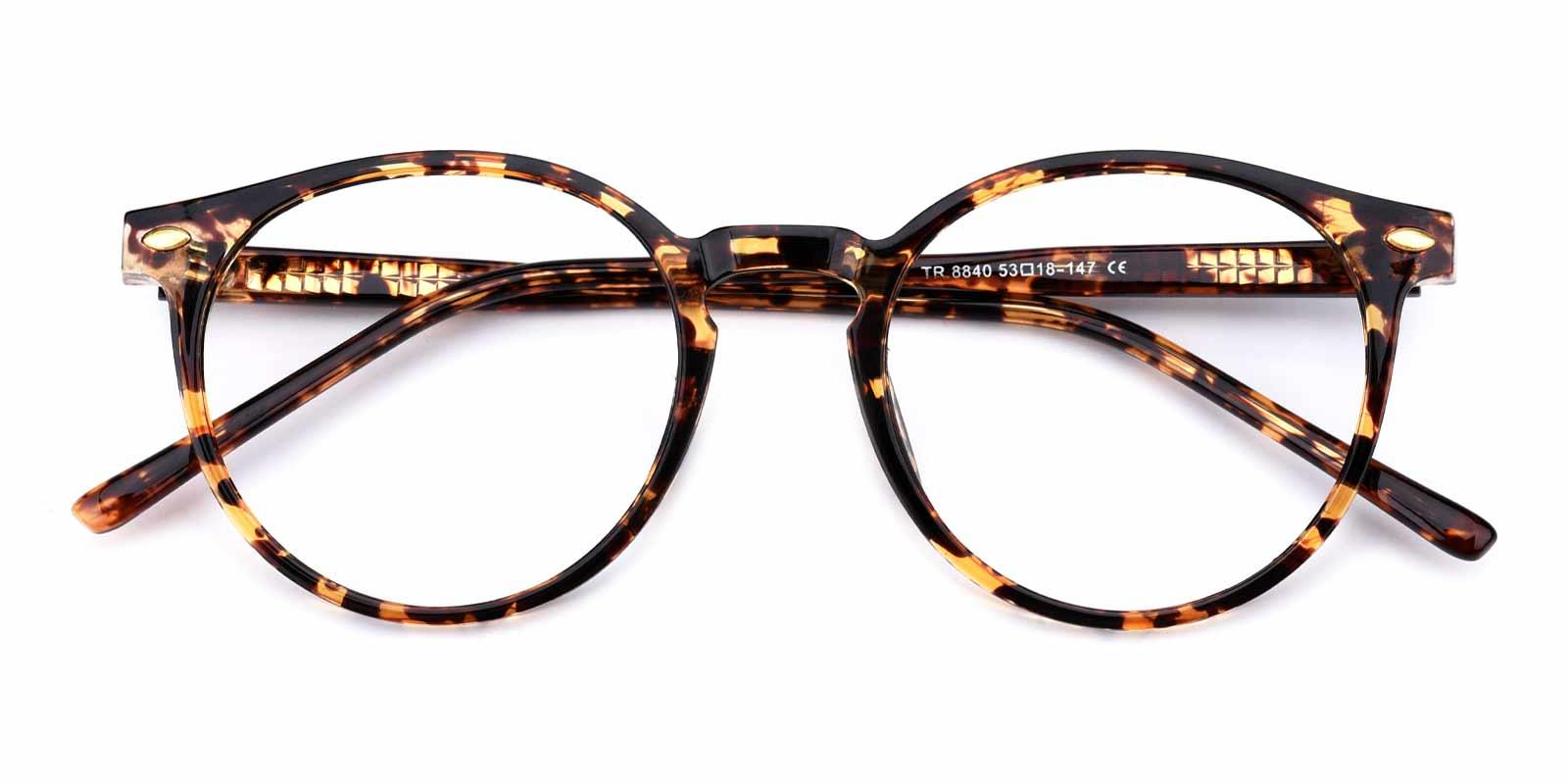 Cain-Tortoise-Round-TR-Eyeglasses-detail