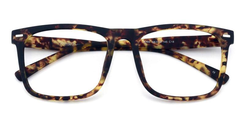 Flynn-Tortoise-Eyeglasses