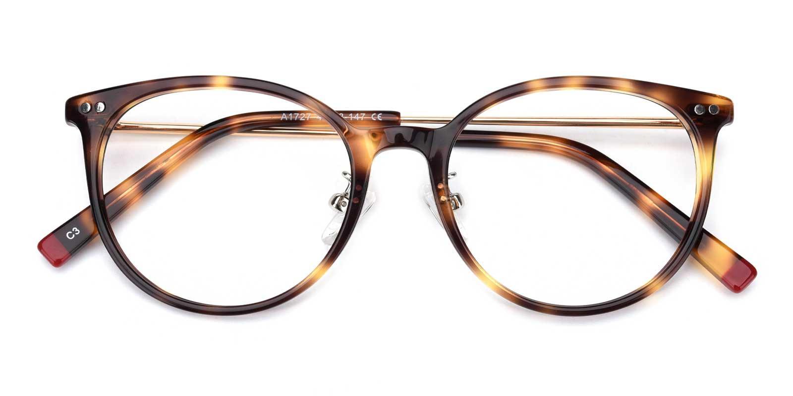 Xenia-Tortoise-Round-TR-Eyeglasses-detail