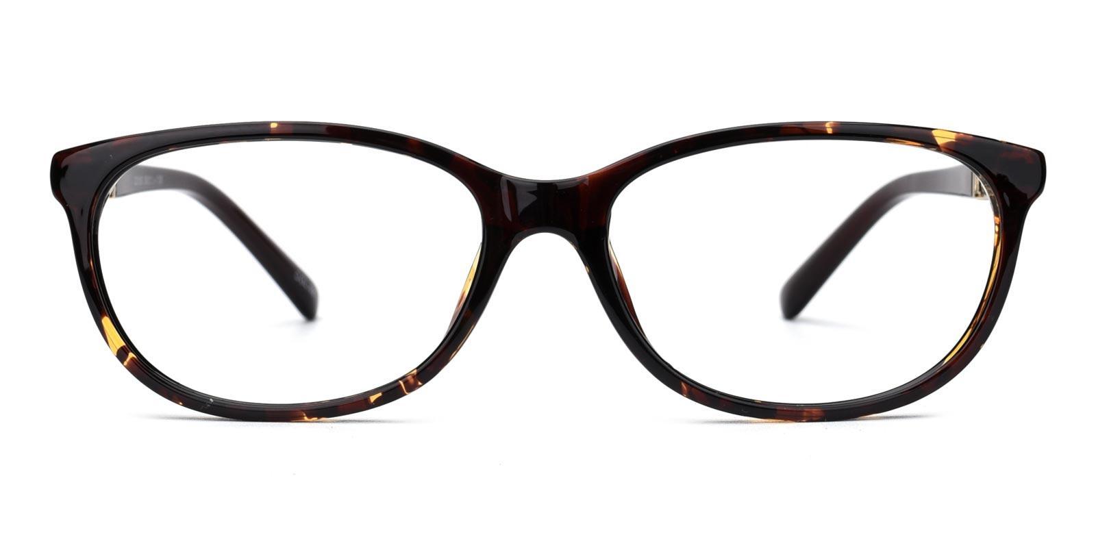 Hilary-Tortoise-Rectangle-TR-Eyeglasses-detail