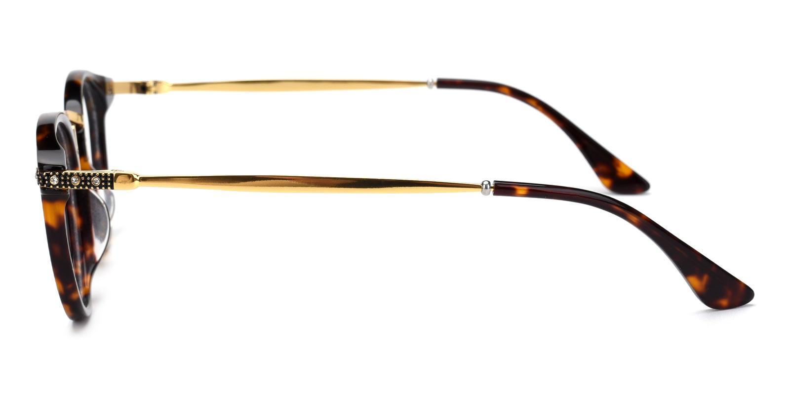 Donna-Tortoise-Round-Acetate-Eyeglasses-additional3