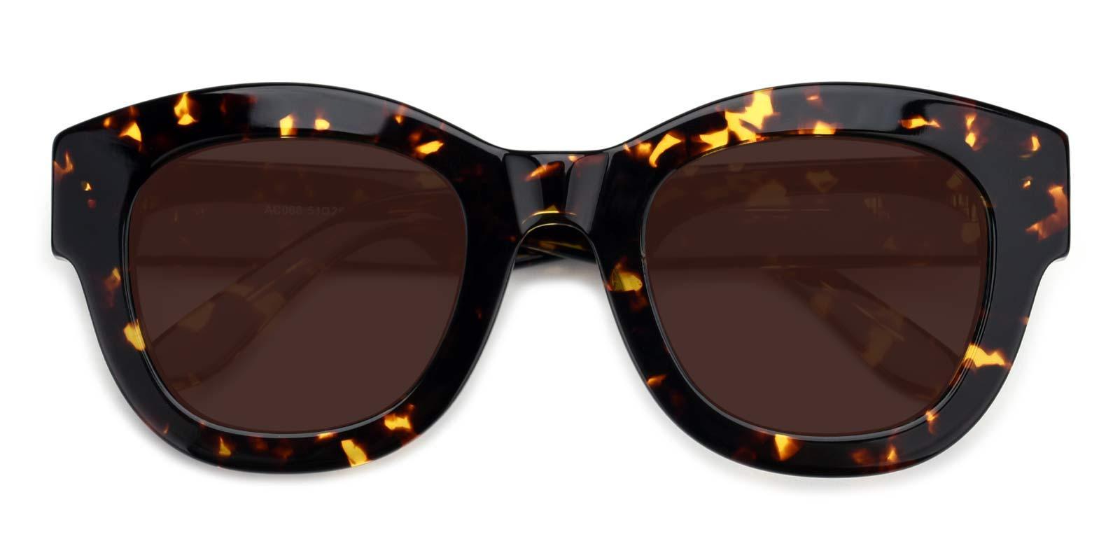 Egypt-Tortoise-Cat-Acetate-Sunglasses-detail