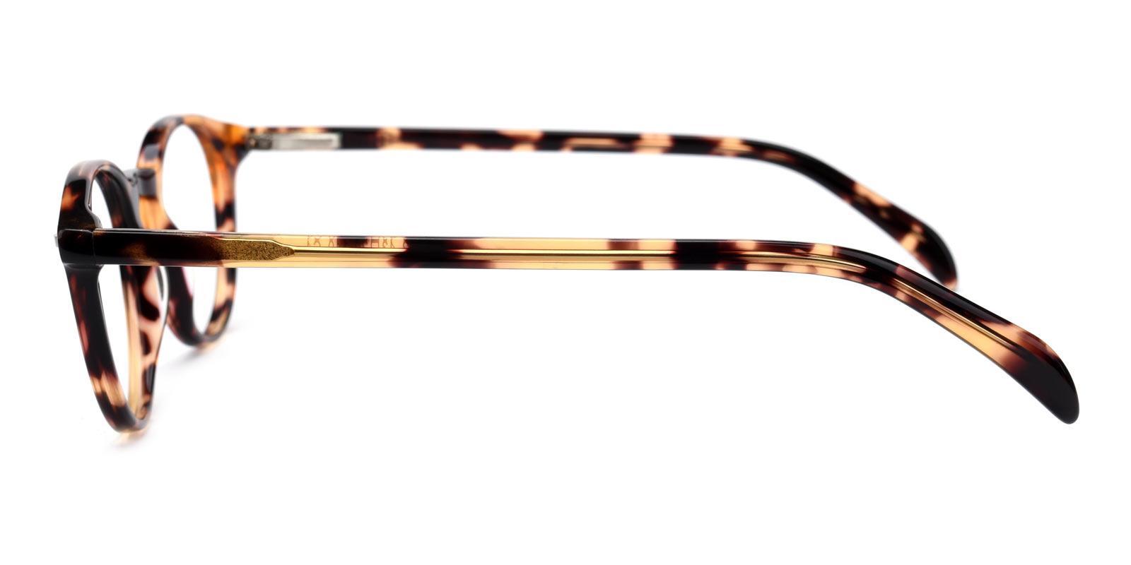 Mediterranean-Tortoise-Round-TR-Eyeglasses-detail