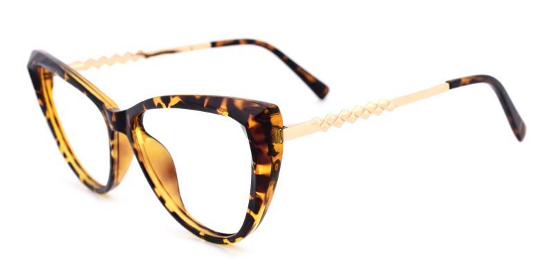 Daydream-Tortoise-Eyeglasses