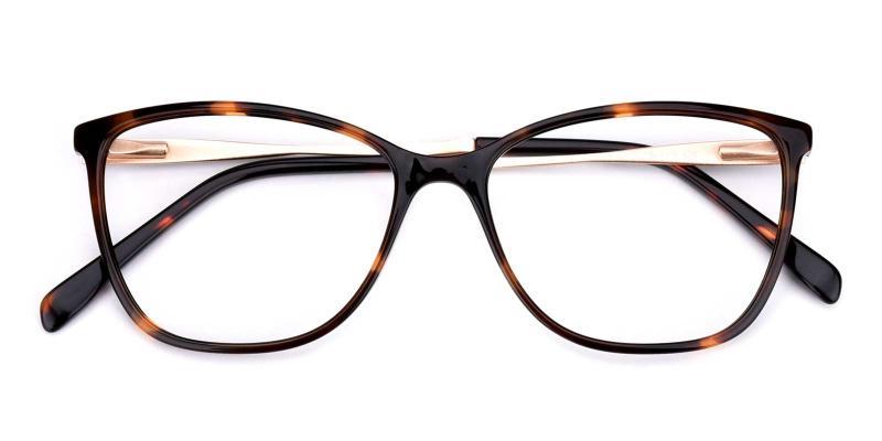 Night-Tortoise-Eyeglasses