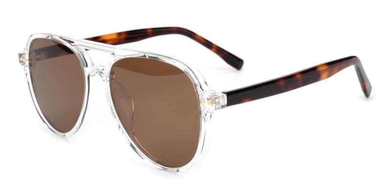 Artists-Tortoise-Sunglasses