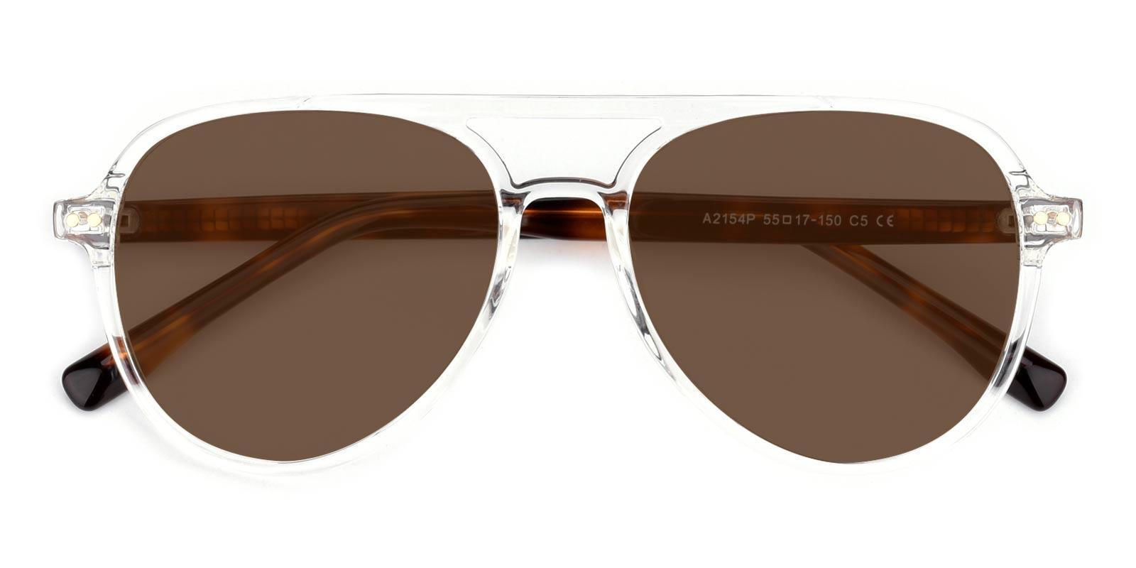 Artists-Tortoise-Aviator-TR-Sunglasses-detail